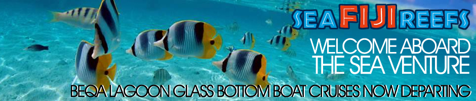 Welcome Aboard The Sea venture - Glass Bottom Boat Tours Fiji